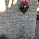Main house wall with roses